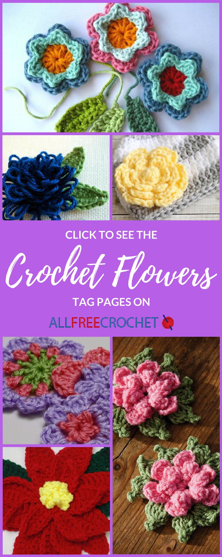 109 best crochet flower patterns images on pinterest knit learn how to crochet flowers and find crochet flower patterns at allfreecrochet bankloansurffo Images
