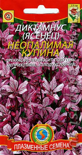 Диктамнус (Ясенец) Неопалимая Купина, 5 шт.