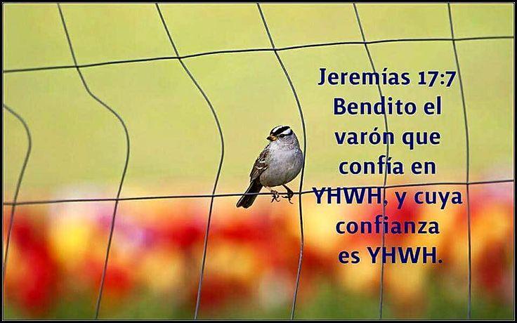 Jeremías 17:7,9-10 [7]Bendito sea aquel que fía en Yahveh, pues no defraudará Yahveh su confianza. [9]El corazón es lo más retorcido; no tiene arreglo: ¿quién lo conoce? [10]Yo, Yahveh, exploro el corazón, pruebo los riñones, para dar a cada cual según su camino, según el fruto de sus obras.