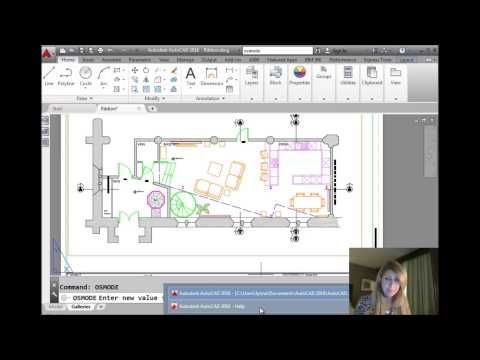 AutoCAD Tip - The Fastest Way to Set Your Favorite Object Snaps (Lynn…