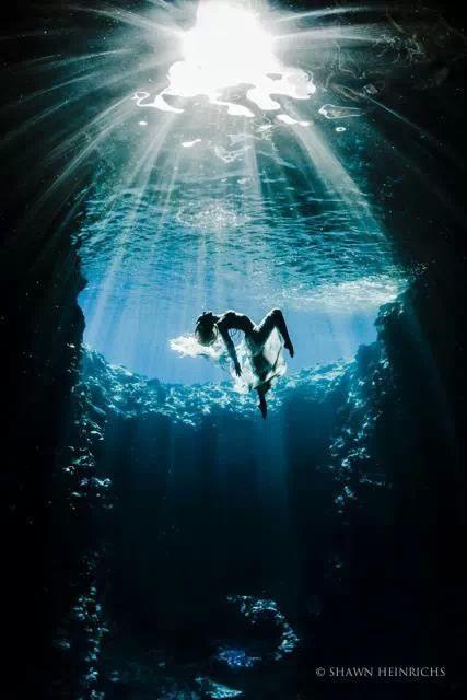 Sous l'eau !