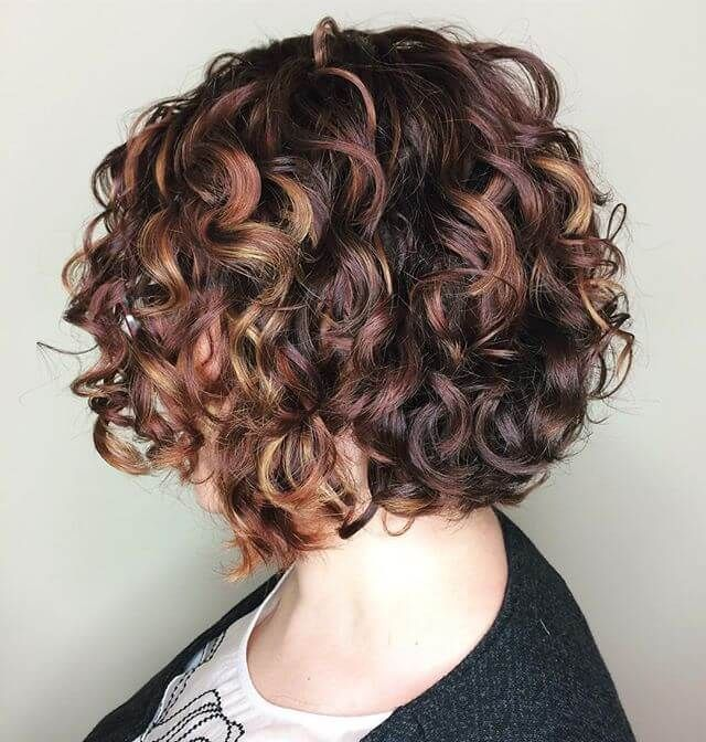 20 Perfect Looks For Short Curly Hair Stylesrant In 2020 Short Curly Bob Hairstyles Short Curly Hair Bob Hairstyles For Thick