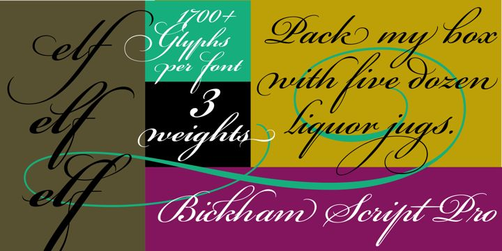 Bickham Script Pro® - Desktop font « MyFonts - Not free, but really pretty