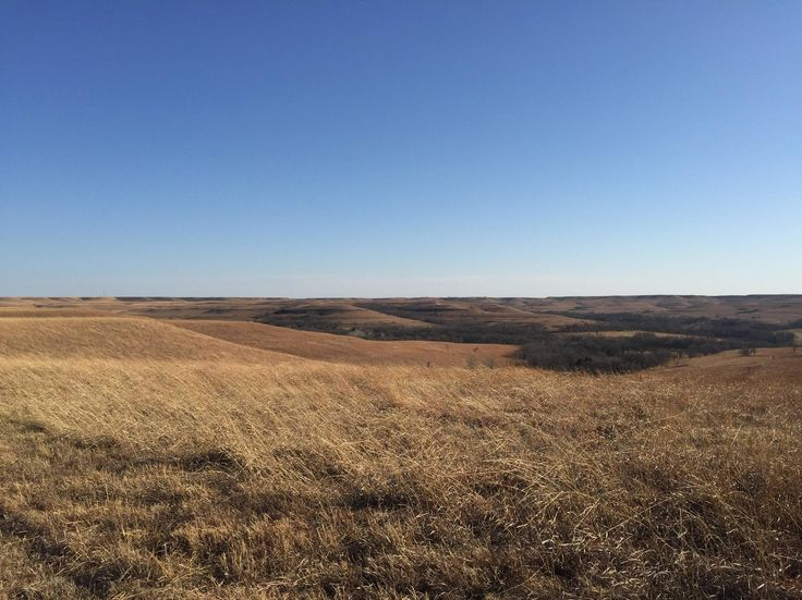 Picture from my first hike somewhere on the Goodwin Hill Loop Konza Prarie Kansas USA. #hiking #camping #outdoors #nature #travel #backpacking #adventure #marmot #outdoor #mountains #photography