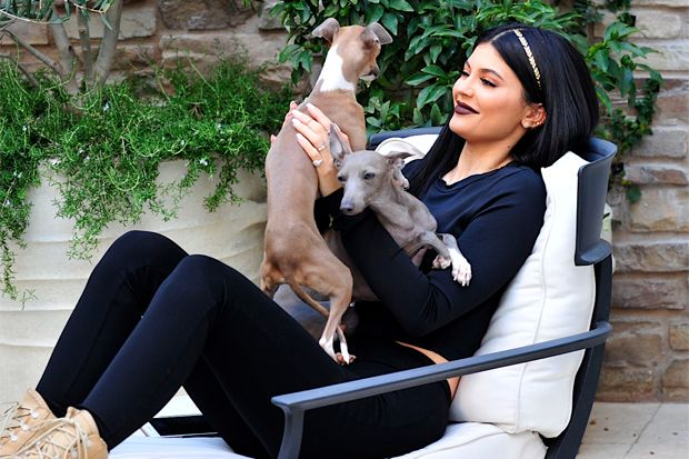 Kylie Jenner and Her Dogs Lead Today's Star Sightings