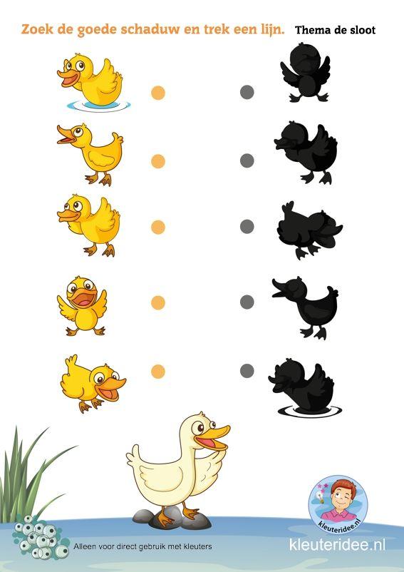 Zoek de juiste schaduw met kleuters, thema de sloot, kleuteridee, Preschool pond theme, free printable.