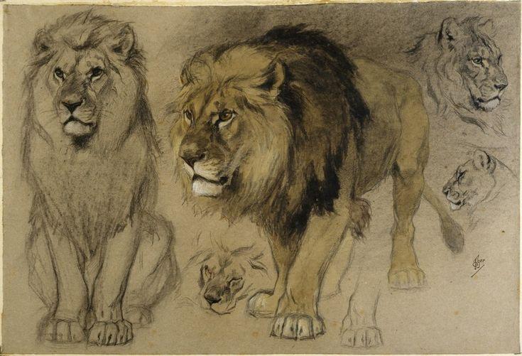 The work Etude de lions - Centre Pompidou