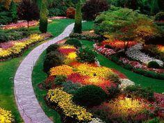 fotografias de paisajes de flores - Fotografias y fotos