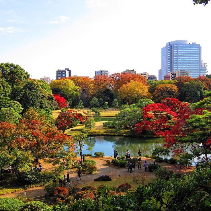 25+ Beautiful Japanese Landscape Ideas On Pinterest