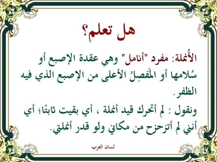 Pin By Soraya On لهذا أحب لغتي Beautiful Arabic Words Arabic Language Learning Arabic