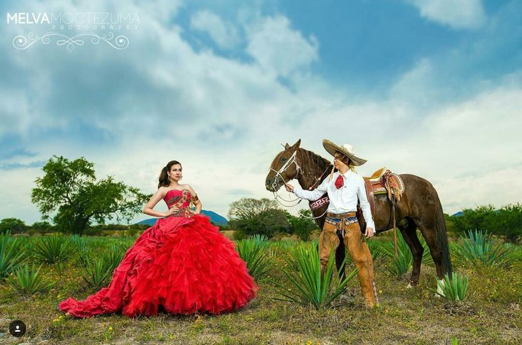 15 Anos Dresses From Mexico: 877 Best Images About Quinceañera Poses On Pinterest