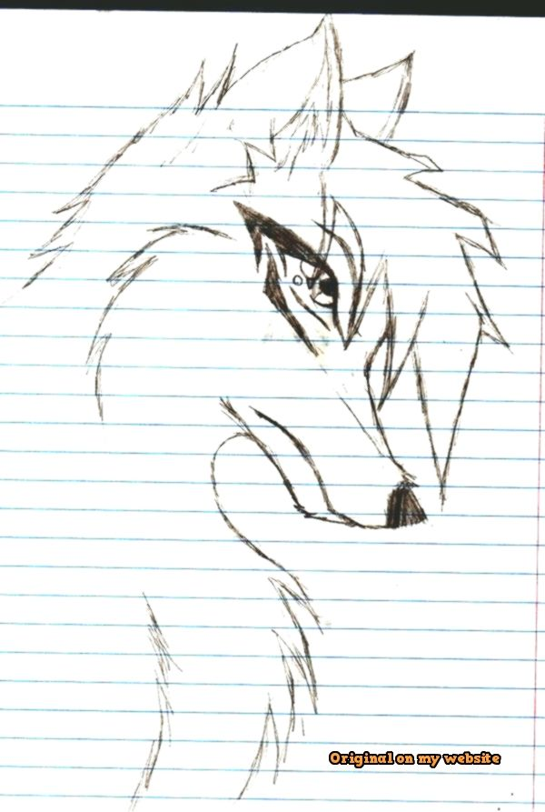 Drawing Art Tumblr How To Draw Anime Wolves 9 Steps With Pictures Wikihow Artdrawings Artdrawingsanimals Artdrawing Art Drawings Anime Wolf Drawings