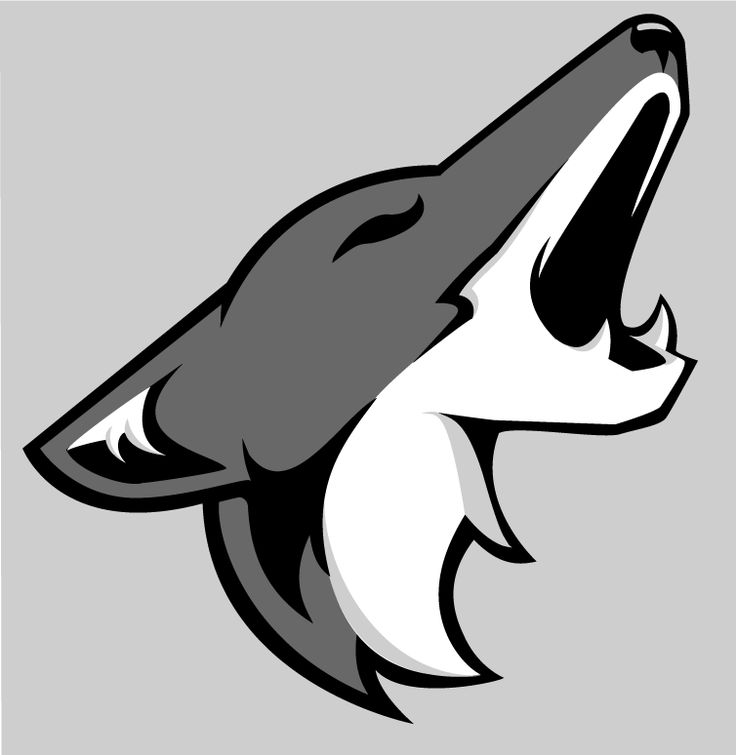 15 best coyote logo posibles images on pinterest wolves