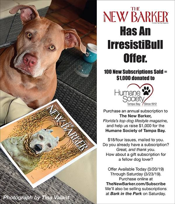 Check It Out Today Through Saturday A Portion Of The New Barker Subscription Sales Will Be Donated To Humane Society Of Tampa With Images Humane Society Barker Tampa Bay