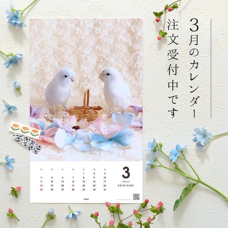 \📅毎月カレンダーの月内お届けは本日2/14(水)注文分まで🚚/毎月カレンダー「3月分」を現在受付中です。こちらは、 @ramune0123 様のマメルリハインコ、ラムネちゃんとソーダちゃんのピクニックカレンダー。寒さに震える毎日ですが、2羽は仲良く春の予行練習中です🐤🐤🌷商品の詳細はリンクボタンから毎月カレンダーサイトへ! #tolot #TOLOT毎月カレンダー #フォトカレンダー #カレンダー #キングジム #KITTA #hitotoki #文具 #文房具 #マスキングテープ #マステ沼 #photo #calendar #monthly #写真 #壁掛け #写真好き #インコ #マメルリハ #ペット #鳥 #小鳥 #ふわもこ部 #癒し #ピクニック #3月のカレンダー月内お届けは2月14日まで受付中