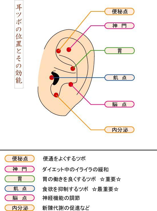 耳ツボダイエット シール療法.耳ツボダイエットシール 製造。個人できます耳ツボ発見器.つぼ発見器..ツボ療法.ツボ検知器..ツボ測定器..せんねん灸.身体のつぼ発見.つぼ発見器.身体のツボ.経穴の位置.ツボの位置