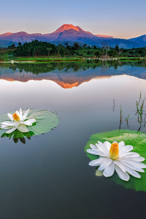 Mount Apo on the island of Mindanao, Philippines by Edwin Martinez