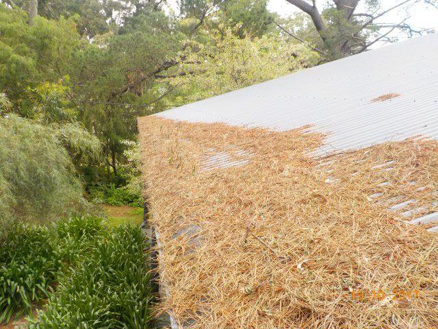 Gutter-Vac Adelaide Hills have been busy removing tinder-dry debris from properties in and around Caurnamont, Mount Barker, Charleston, Norton Summit, Summertown, Uraidla, Crafers, Aldgate, Cherry Gardens, Meadows, Springton, and Mount George.