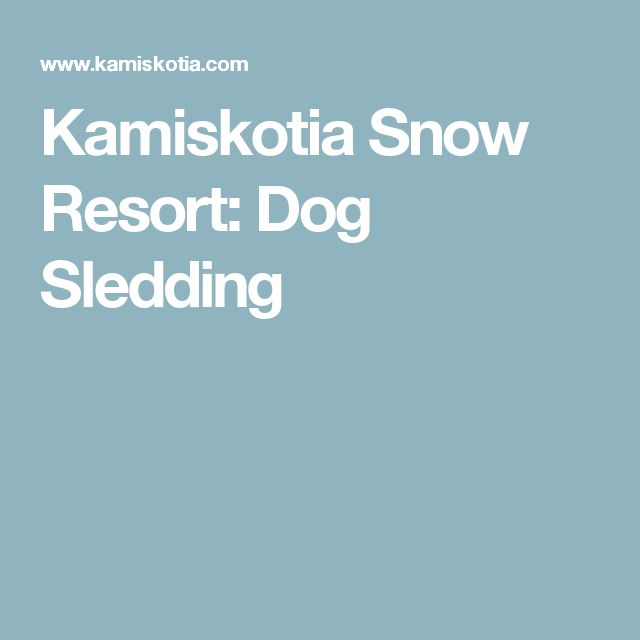 Kamiskotia Snow Resort: Dog Sledding