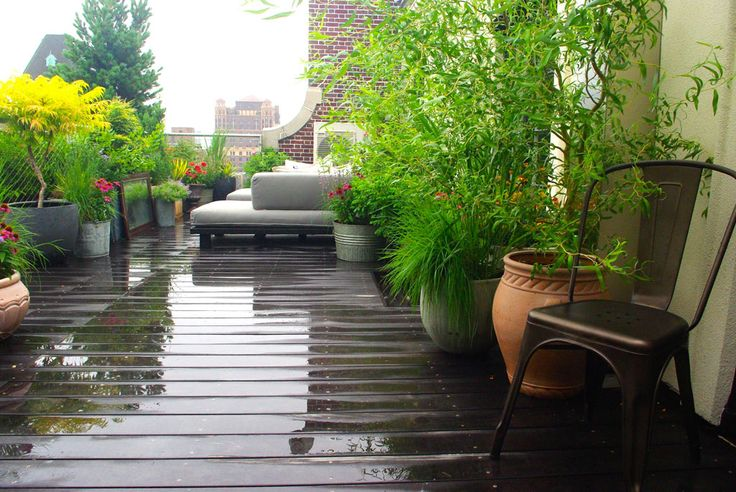 1000 Ideas About Rooftop Gardens On Pinterest Roof