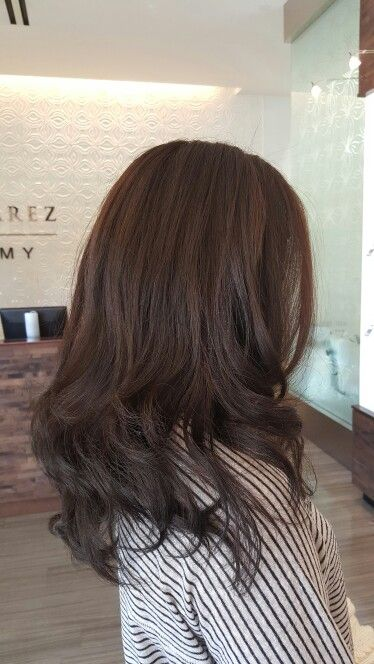 Bar Ideen Majirel 20 Vol 1/2 6n,1/2 7.1 & Richess 5.25 Darker Brown