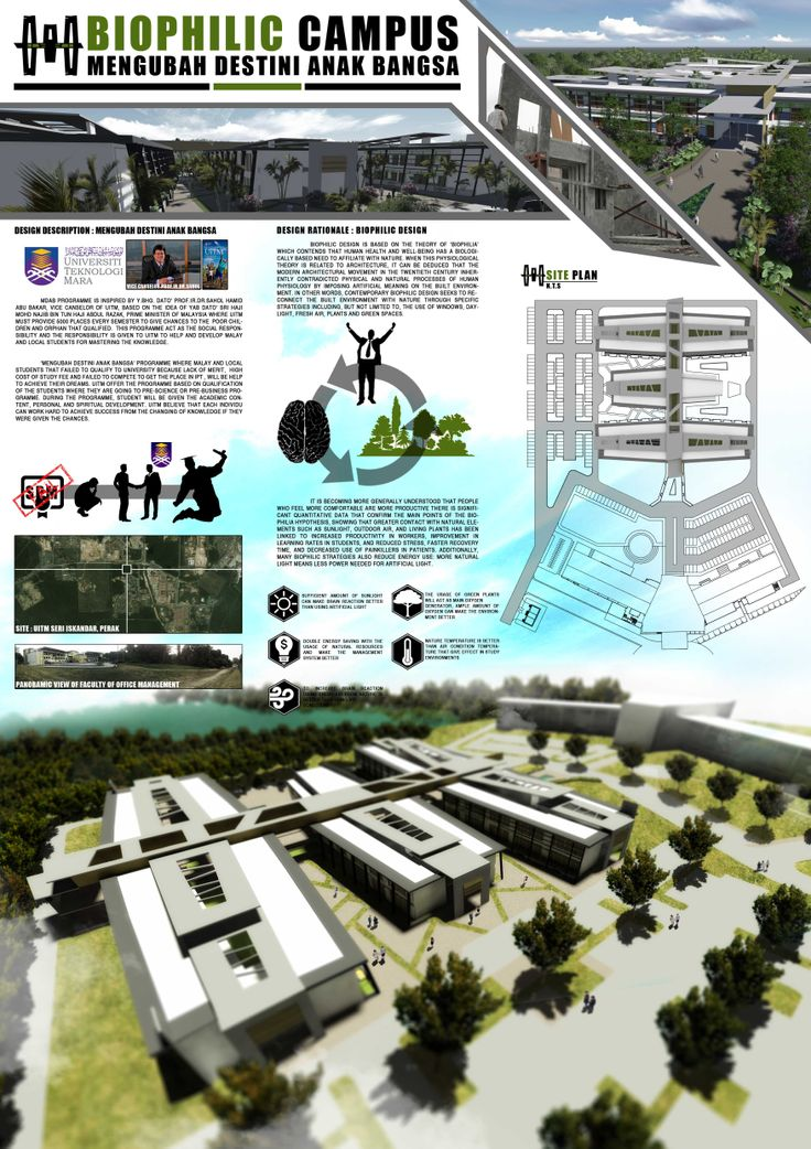Thesis project on campus design