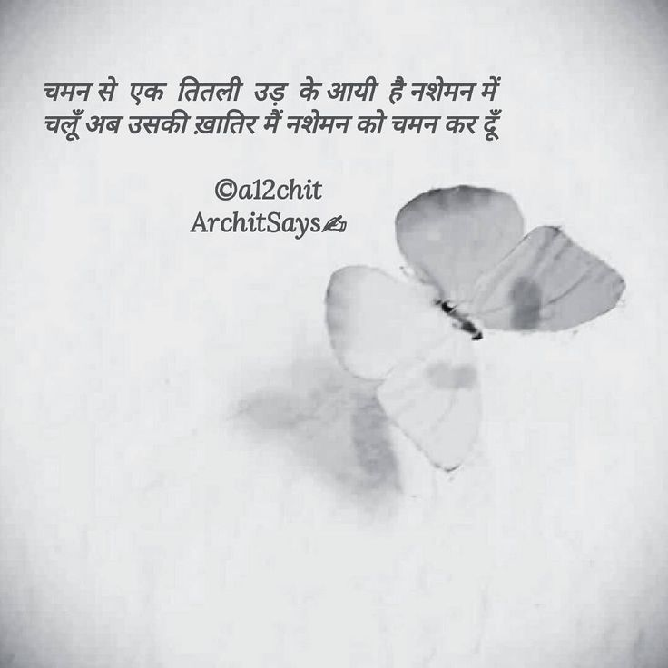 एक ततल! . . . . . #architsays #love #compassion #life #butterfly  #nature #hindi #hindiwriters  #writersofig #hindipoetry #hindipoems #hindipoet #poem #writer #writersofinstagram #poetsofinstagram #poetsofig #wordporn #wordswag #poetry #igpoets #yourquote #writing #motivationalquotes #inspirationalquotes #quotesgram #gaanvdehat #indianwriter #yqdidi @hindiwriters Follow www.mirakee.com/a12chit on Mirakee @mirakeeapp #mirakee Background credit: google