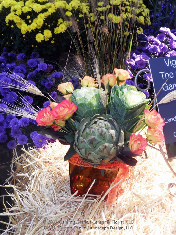 20 Best Images About Vines Vignettes Display Gardens On Pinterest Gardens Floral