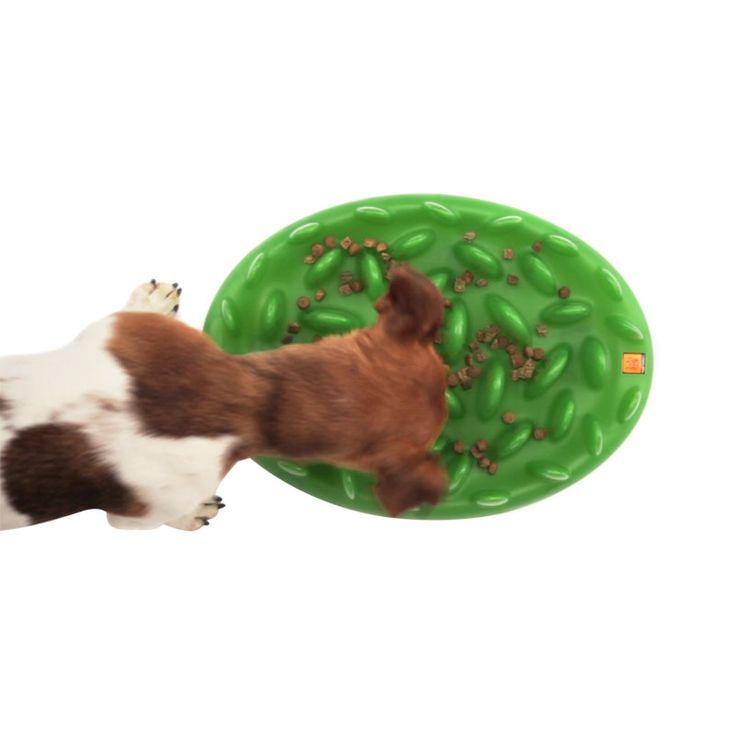 Miska spowalniająca jedzenie może wykorzystywać się jako zabawka interaktywna – poszukiwanie pokarmu staje się grą, stymulującą mózg psa.