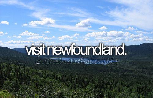 *newfoundland!