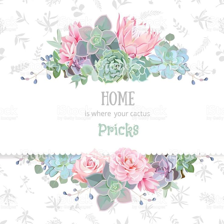 Green succulents vector design frame. Echeveria, protea, eucaliptus royalty-free stock vector art