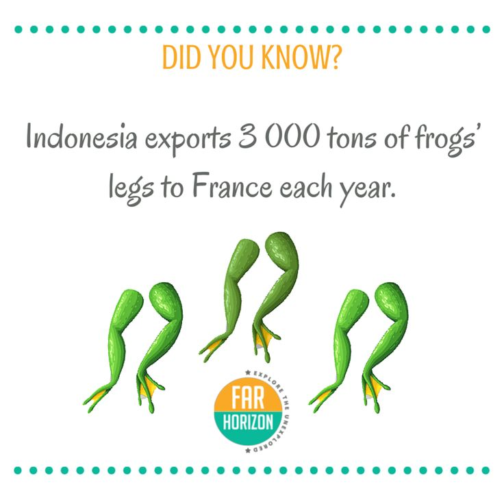 Bet You Didn't Know That! #froglegs #Indonesia #Curiosity