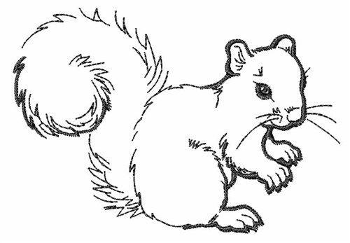 squirrel outline embroidery design wild animals squirrel coloring page animal coloring. Black Bedroom Furniture Sets. Home Design Ideas