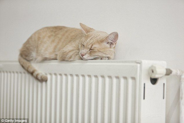 The Centre for Sustainable Energy advises that programming your boiler to turn the heating on earlier – such as 30 minutes before you get up in the morning – but at a lower temperature is cheaper than turning it on just as you need it at a higher temperature (stock image)
