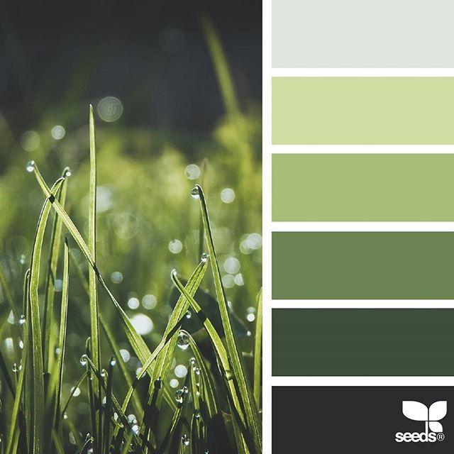 Best 25 Color Palette Green Ideas On Pinterest