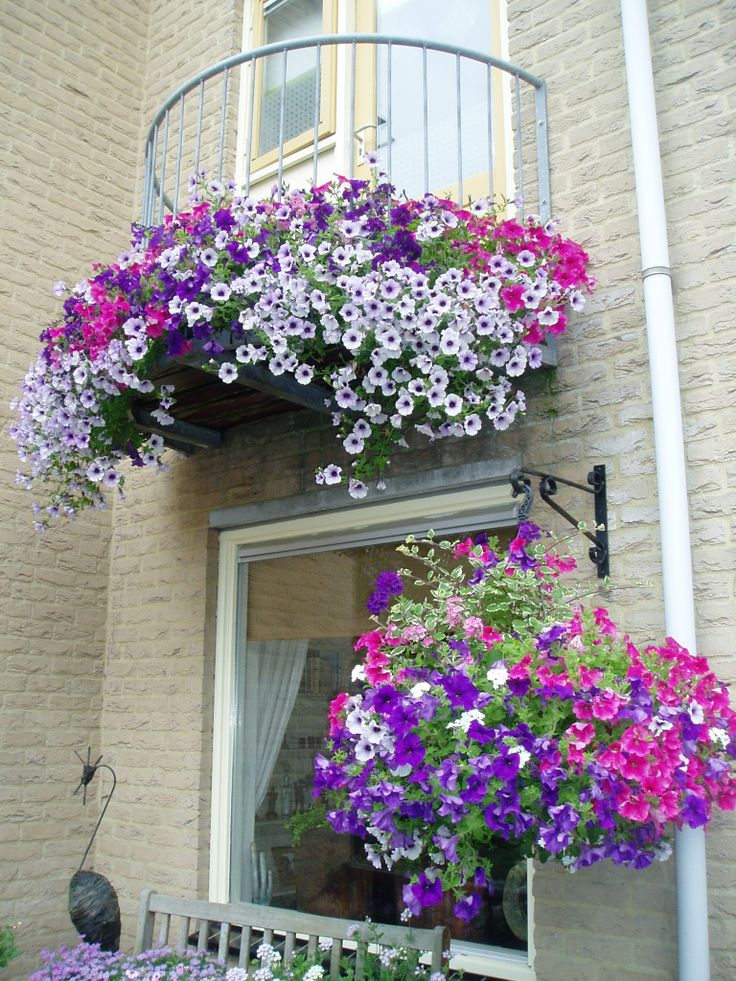 83 best images about huyskweker on pinterest bretagne hanging baskets and balconies - Flowers hanging baskets porches balconies ...
