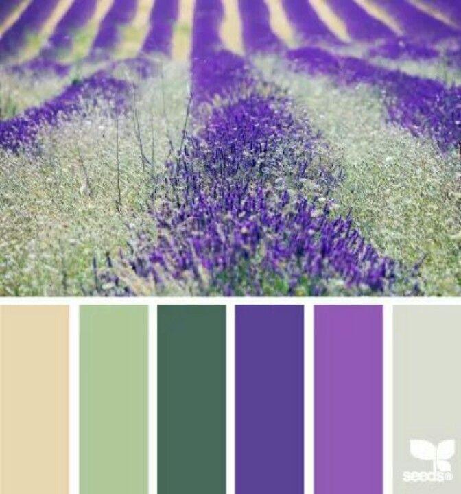 1000 ideas about seeds color palettes on pinterest - Colores que combinan ...