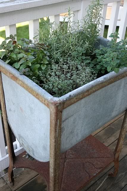 Under The Table And Dreaming: Herb Garden Inspiration U0026 Ideas {Over 50 Pots,.  Galvanized ...