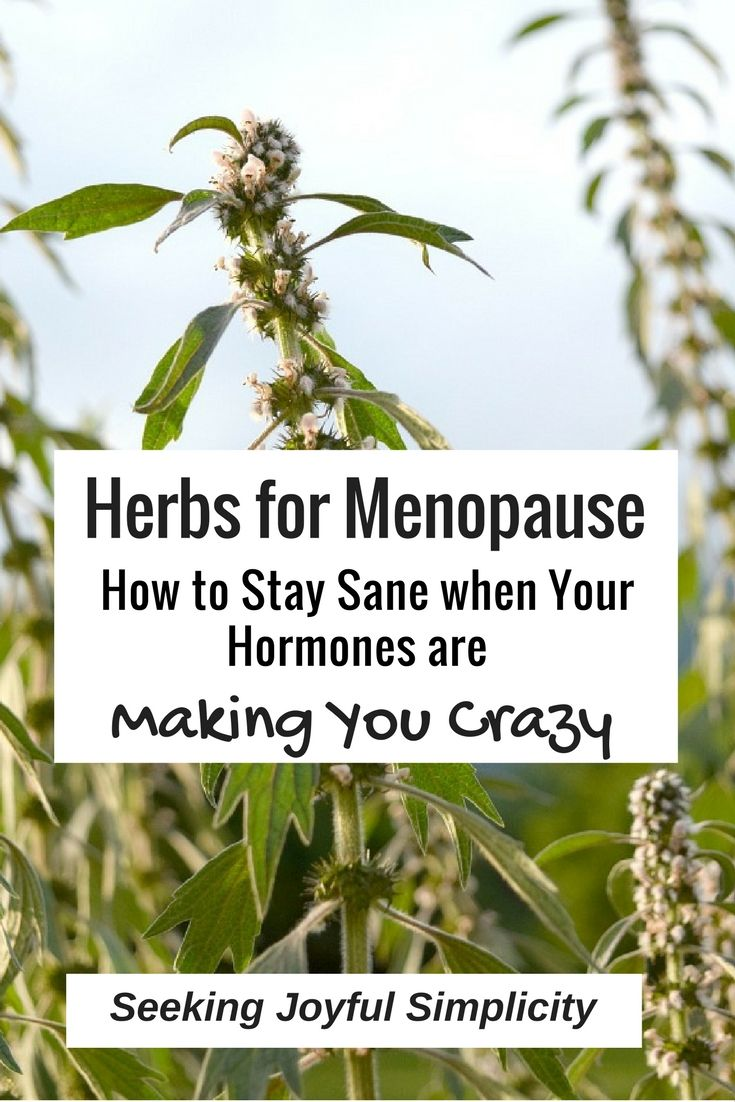 The best herbs for menopause - how to stay sane when your hormones are making you crazy. Herbs for menopause have a long history of use in supporting women's health and they can offer us relief, bring balance, and support deep healing. Check out these 10 herbs for women over 40
