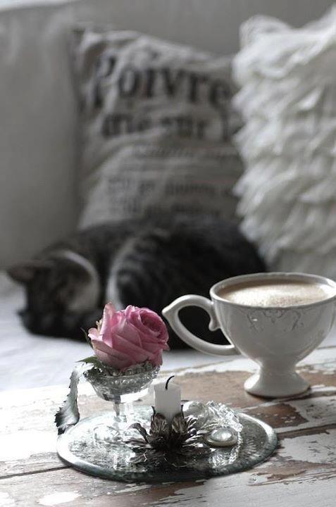 Shabby Chick cosy corner #vintage #tea #cup