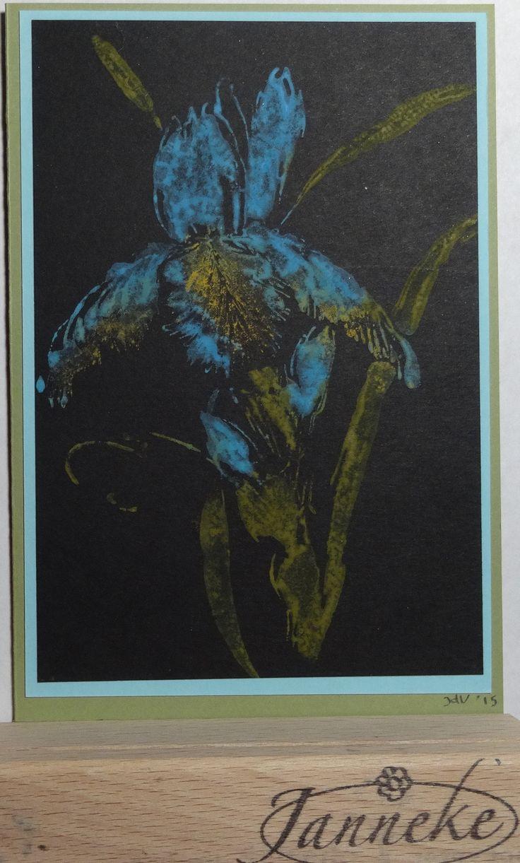 Op zwart Cardstock. De stempel van Penny Black (Pure Iris) heb ik ingekleurd met Distress Paints, bemist en afgedrukt. Geeft wel een leuk effect.
