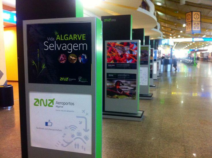 Environment exibition @FAO airport