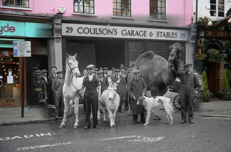 In this digital composite image a comparison has been made of London at Edell Street in 1930 (Archive, Fox Photos) and Modern Day 2014 (Peter Macdiarmid) at Christmas time.  *** ARCHIVE *** LONDON - DECEMBER 1930:  Stable companions appear in 'Song of the Drum' at Drury Lane Theatre at Endell Street on December 30, 1933 in London, England.  (Photo by Fox Photos/Getty Images) ***MODERN DAY*** LONDON, ENGLAND - DECEMBER 9:  Text on the pavement marks where to load on Endell Street near Covent…