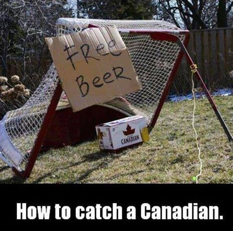 How to catch a Canadian.