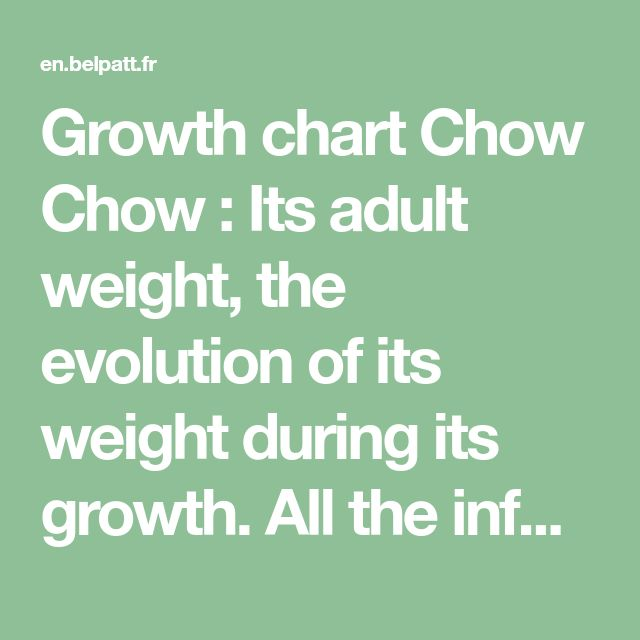 Growth Chart Chow Chow Its Adult Weight The Evolution Of Its