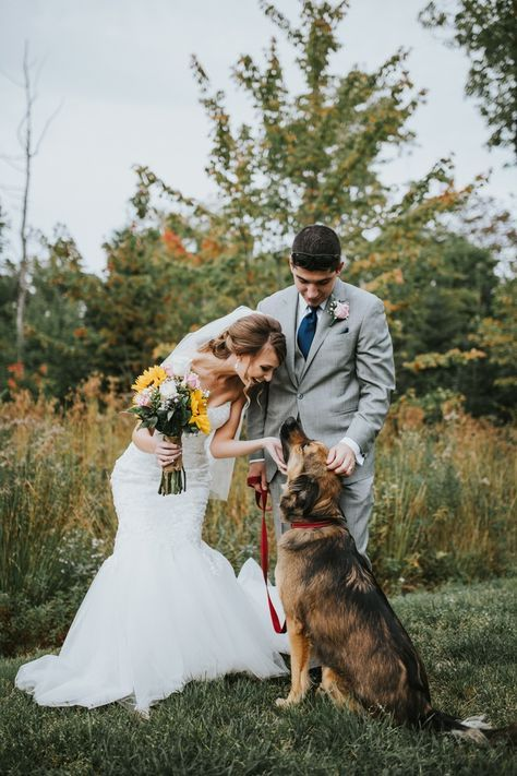 Bride and pet