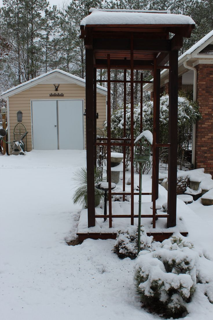 Little arbor in the snow