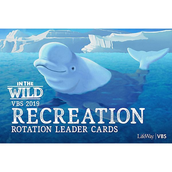 Recreation Rotation Leader Cards - In The Wild VBS by
