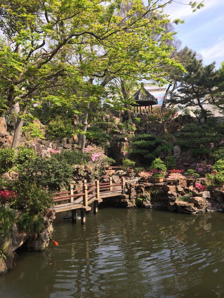 More Gardens...