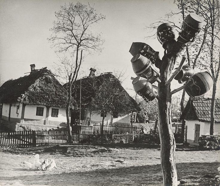 Ester Plicková Krása hliny. Hrnčiarska dedina Pozdišovce 1947